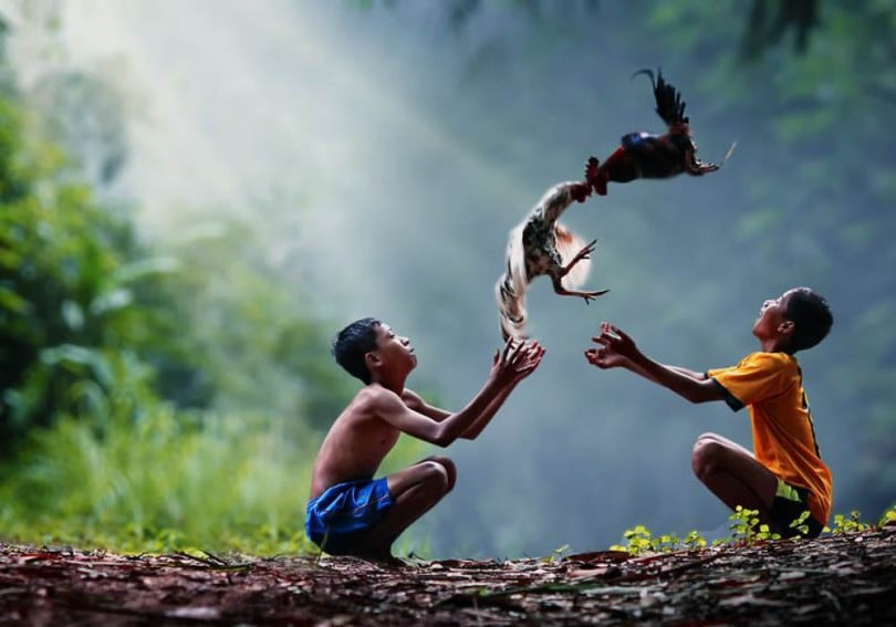 Photographer Captures the Carefree World of Children in an Indonesian Village 20