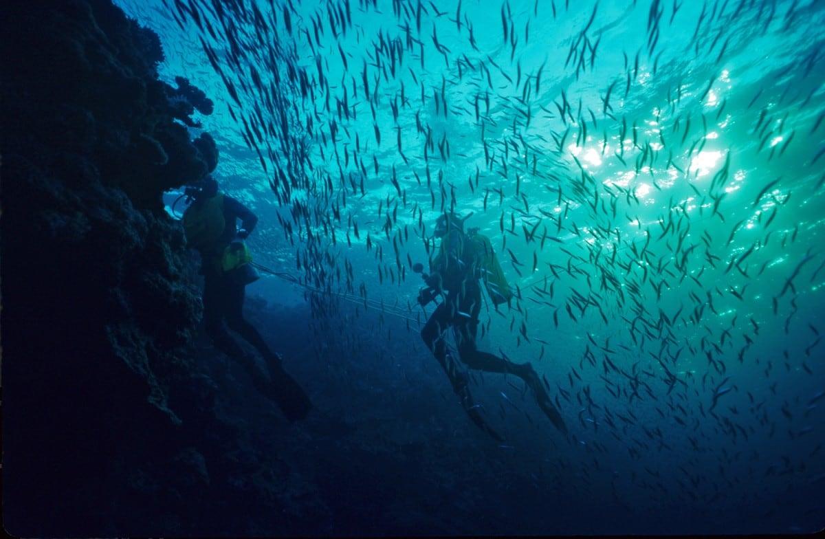 scubai diving micronesia