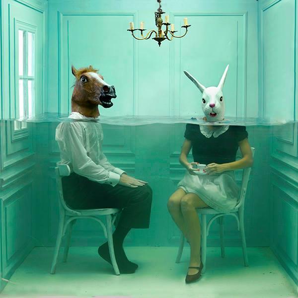 Human+side+The+zoo+Home