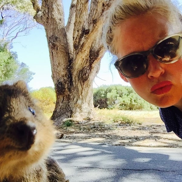 Quokka_Selfies_Meet_the_Worlds_happiest_Animal_on_Instagram_2015_07