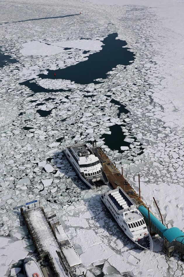 Winter of 2015: 16 Photos of Boston's Whitest Winter 5