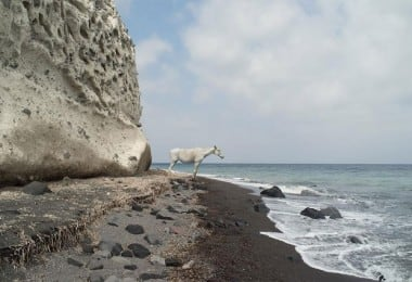 Discover The Other Side of Santorini by Petros Koublis 13