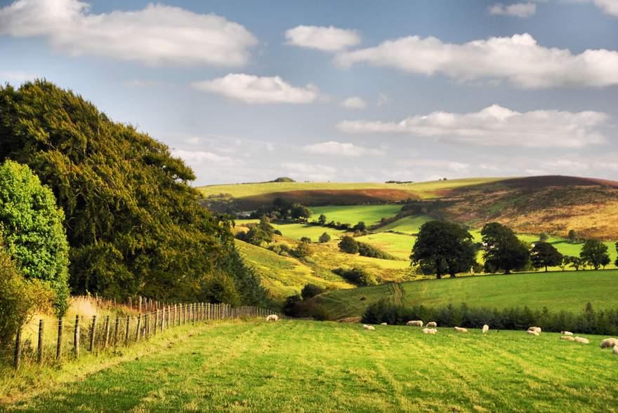 british Countryside 10