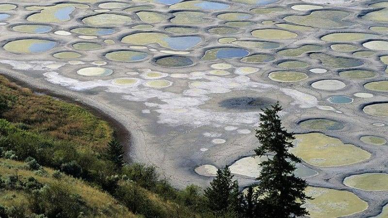 Source: boredpanda.com {link: http://www.boredpanda.com/earth-photos-look-alien}