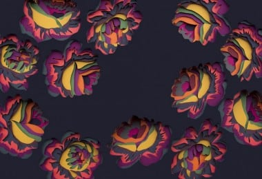 flora1-770x517