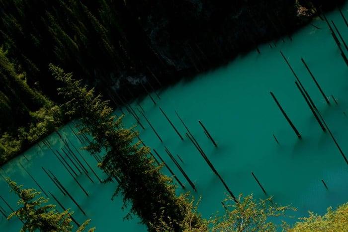Sunken-forest-kazakhstan-7
