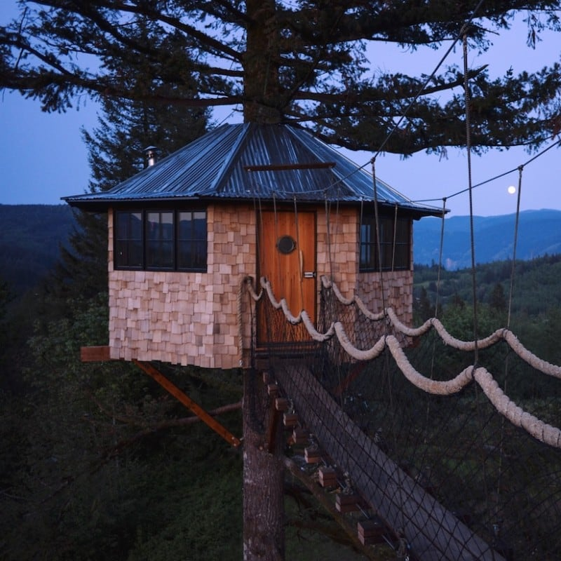 cinder_cone_skate_treehouse_01