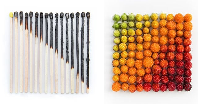 colorful-every-day-items-food-arrangements-emily-blincoe-thumb640