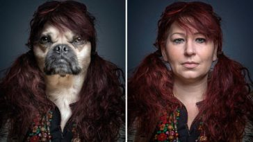 Dog spliced with their owner