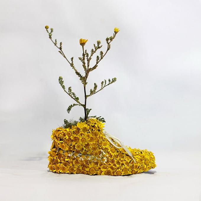 Mr Plant02
