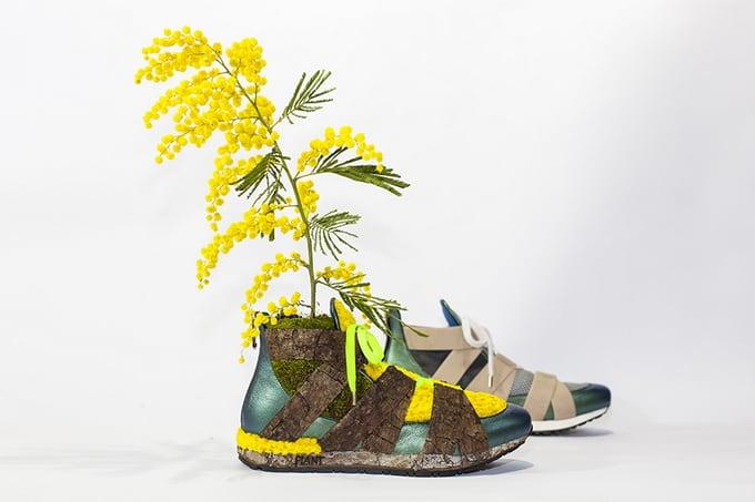 Mr Plant08