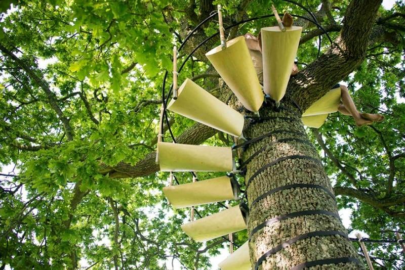 canopy-tree-stairs-thor-ter-kulve-robert-mcintyre-canopystair-5
