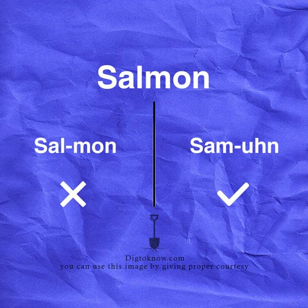 salmon-pronunciation