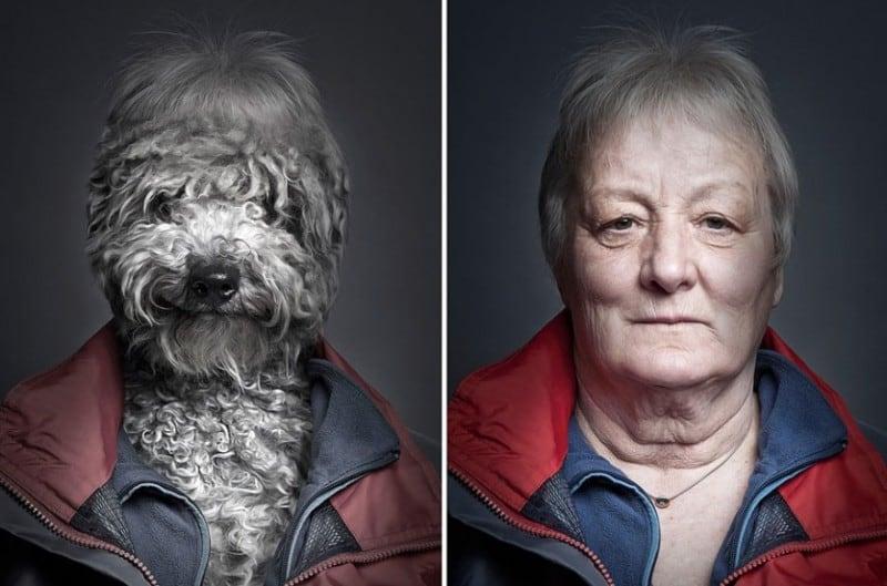 underdog-dogs-dressed-like-owners-sebastian-magnani-2