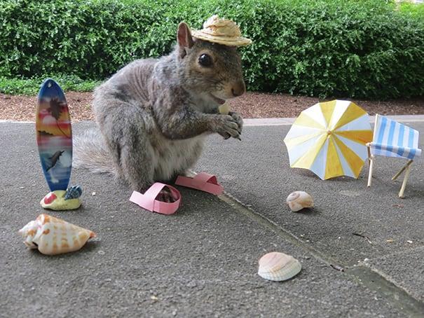 costume-squirrel-whisperer-sneezy-nary-krupa-29