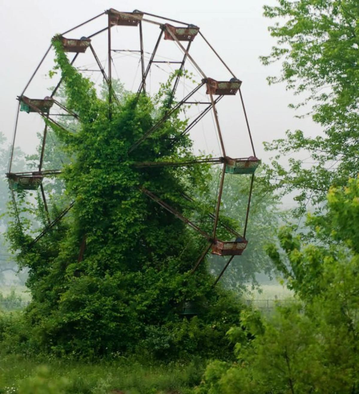 designbump-com-nature-reclaiming-abandoned-places-