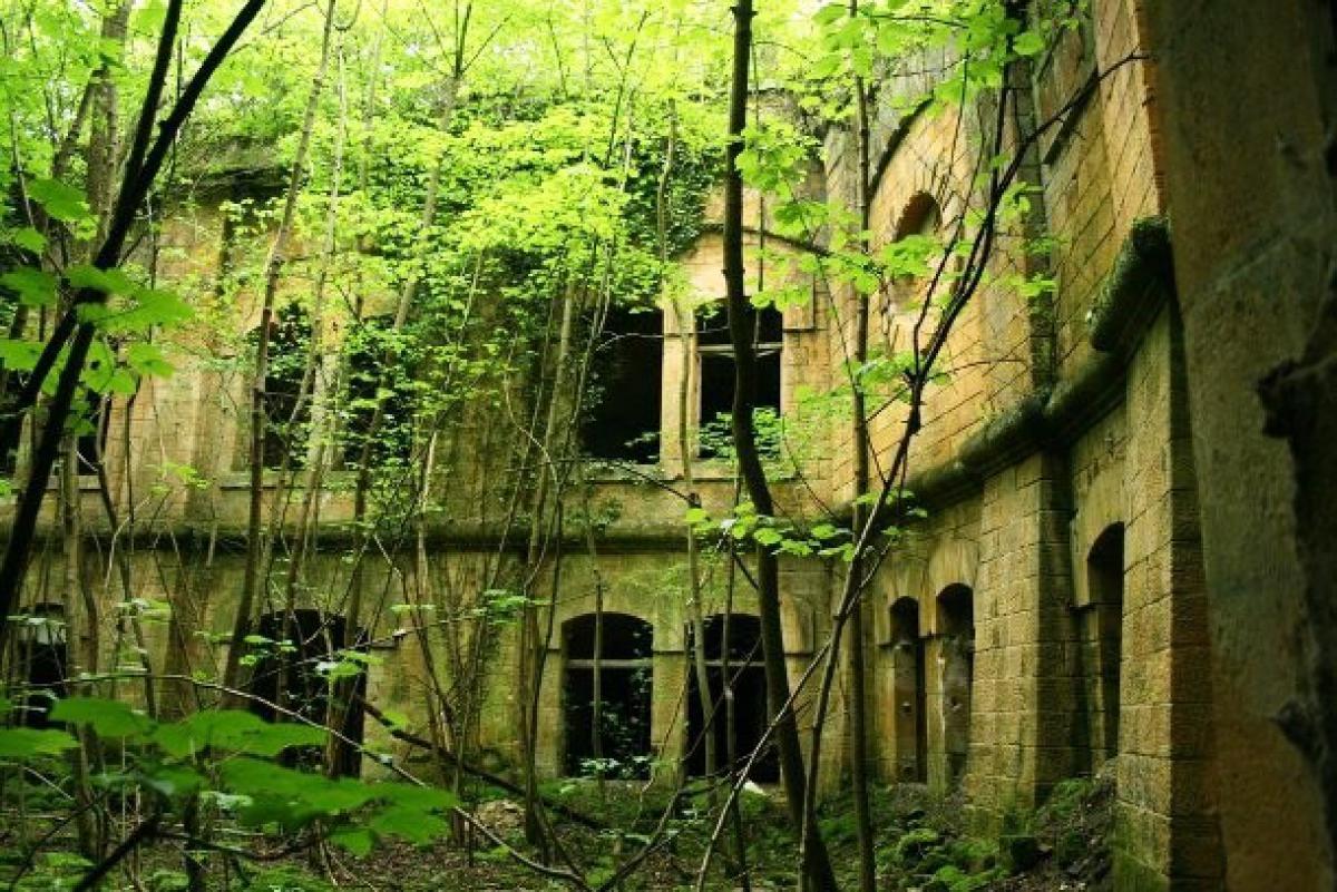 ferretsroq-blogspot-com-jungle-palace-610x407-R3Dm