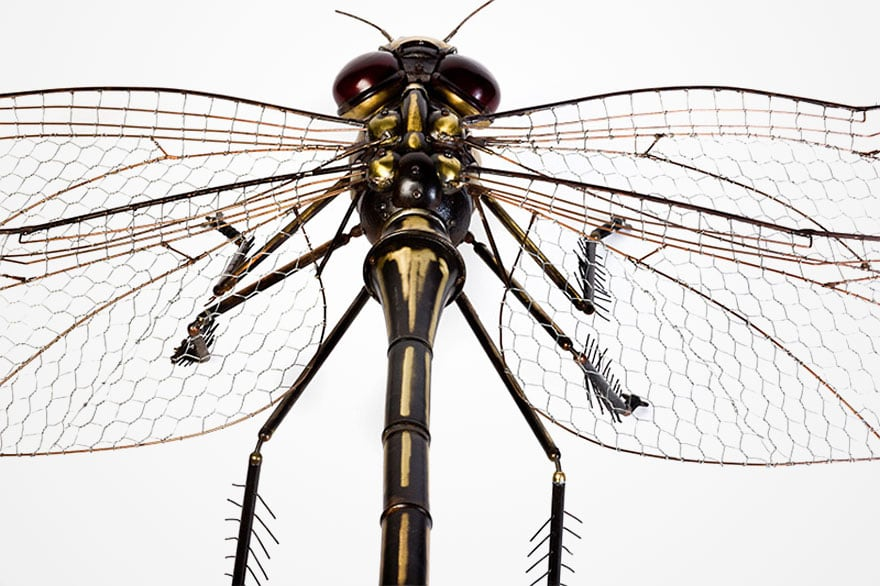 insect-sculptures-edouard-martinet-11