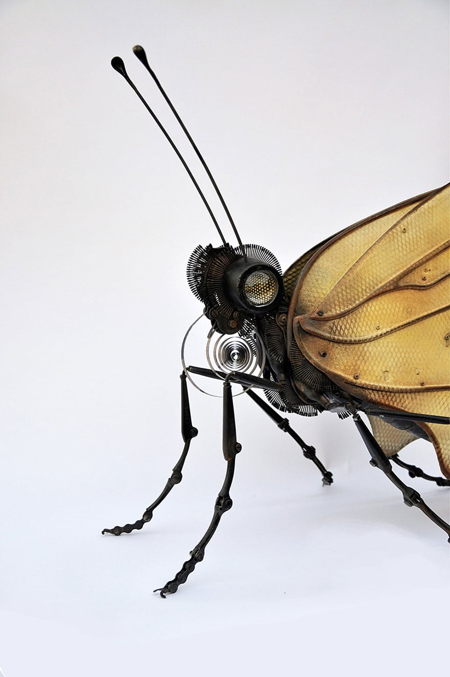 insect-sculptures-edouard-martinet-2