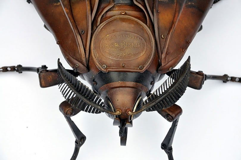 insect-sculptures-edouard-martinet-8