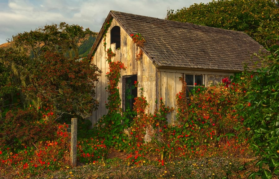 the-most-beautiful-abandoned-cabins-waiting-for-owners-to-come-28