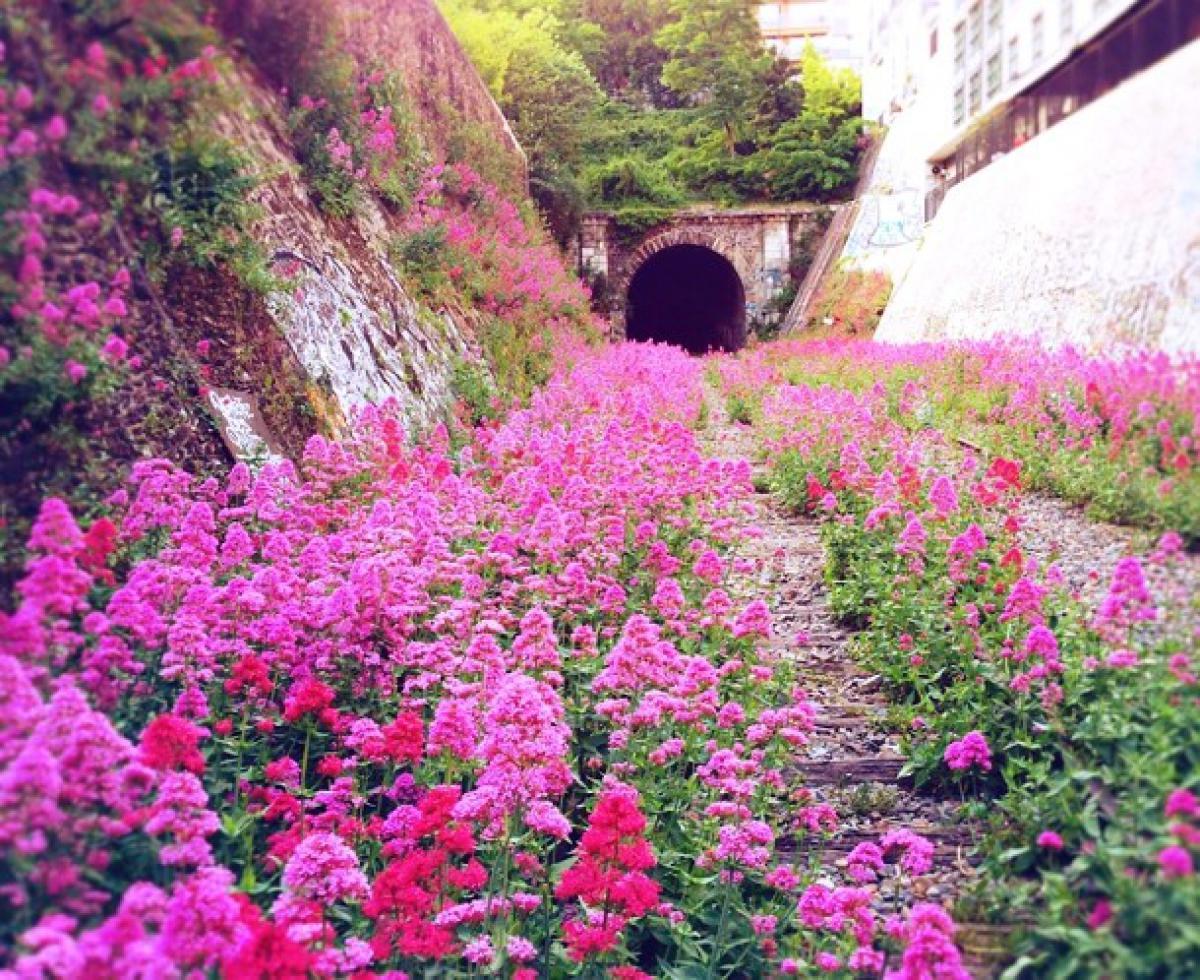 www-boredpanda-com-nature-reclaiming-abandoned-pla