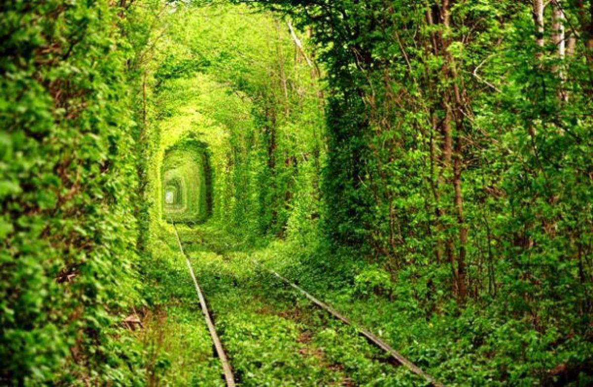 www-placestoseeinyourlifetime-com-tunnel-of-love-i