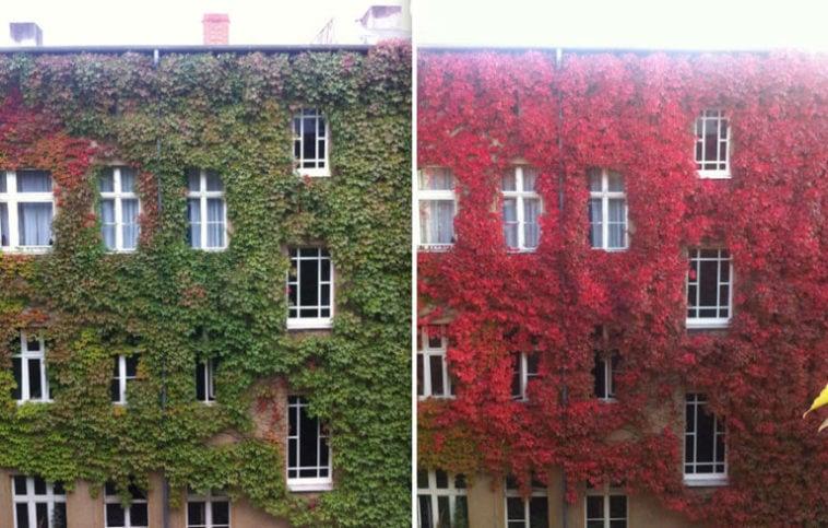 Apartment Building Facade 768x489