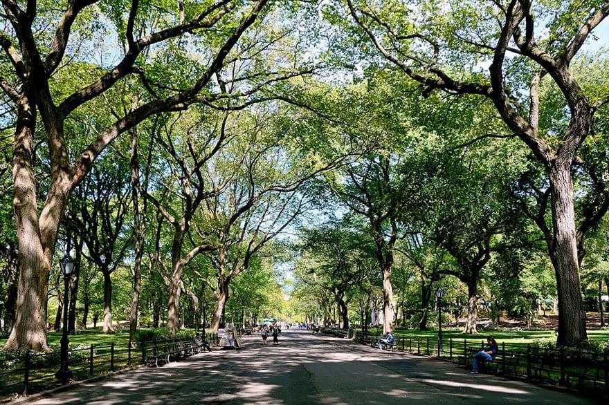Poet's Walk, Central Park