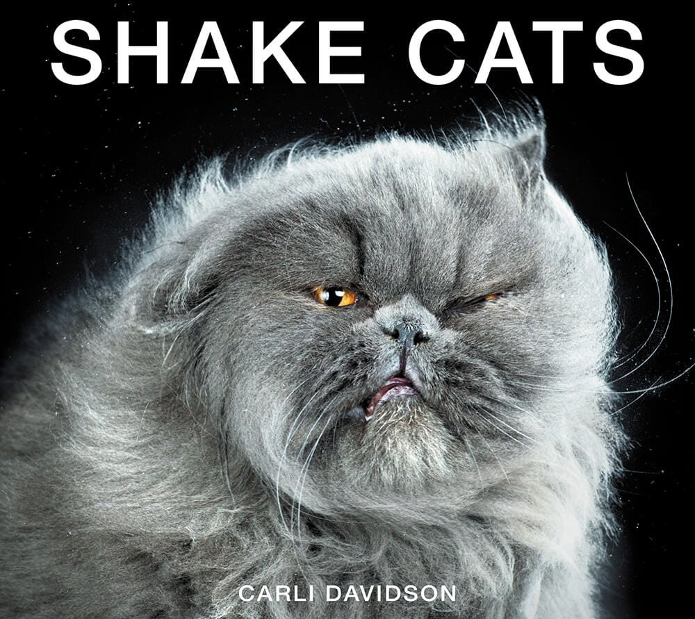 ShakeCats-hc-c