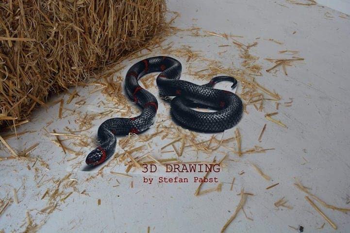 Snake1 1