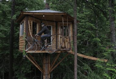 cabin-book-porn