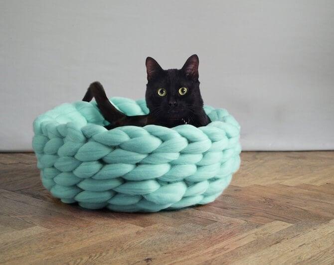 chunky-knits-pets-ohhio-anna-mo-freeyork-3
