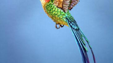 paperhummingbird5