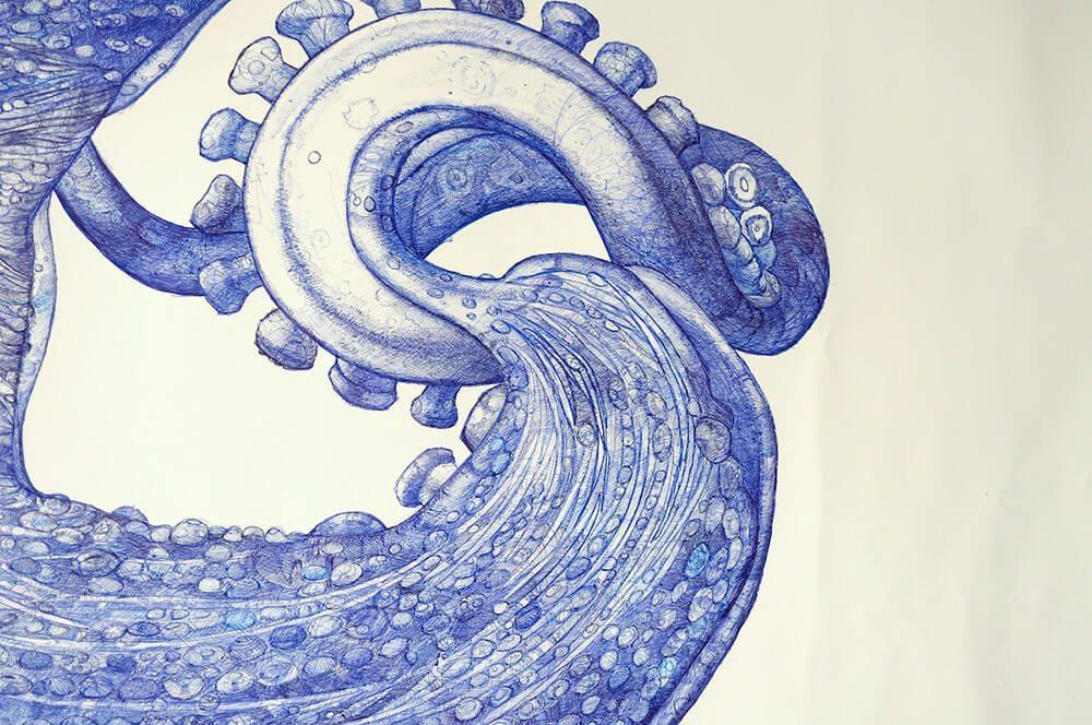 ray-cicin-octopus-freeyork-3