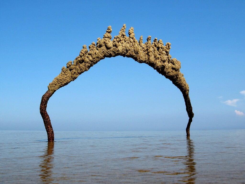 sandcastles-matt-kaliner-freeyork2