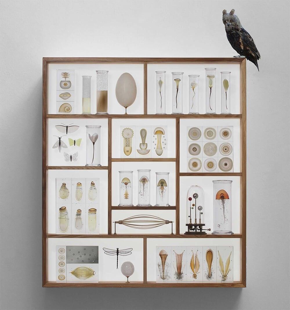 steffen-dam-joanna-bird-gallery-fy-11