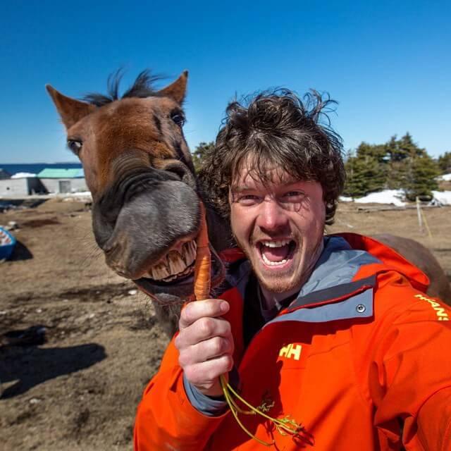 allan-dixon-animal-selfies-freeyork-9