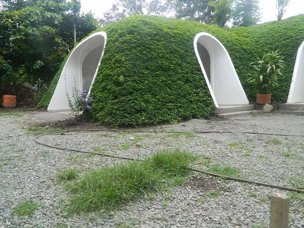 green-magic-homes-freeyork-10