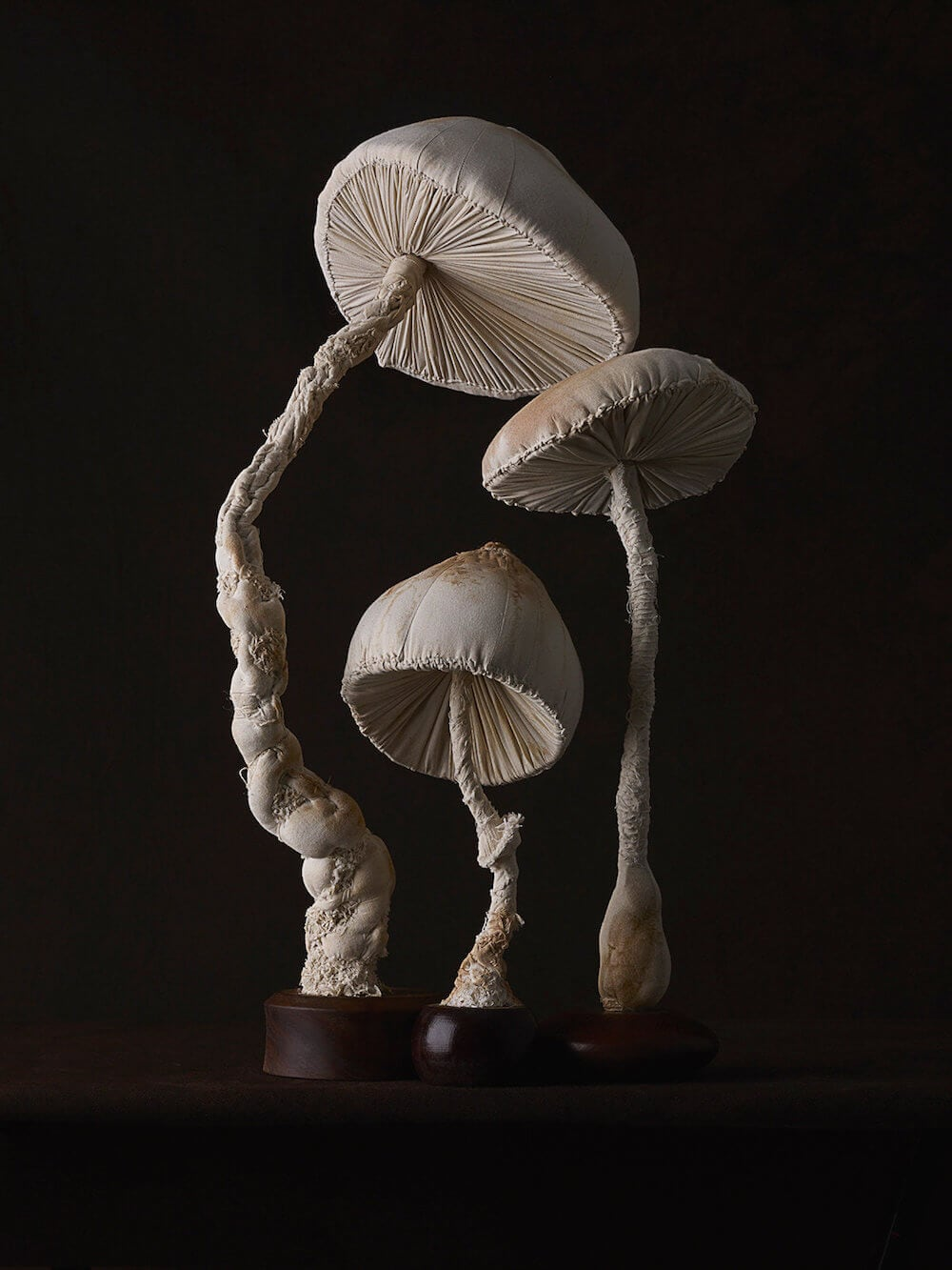 toadstool-sculptures-mister-finch-freeyork-7