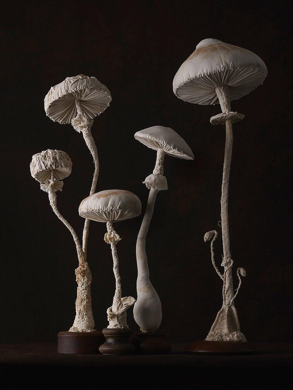 toadstool-sculptures-mister-finch-freeyork-8
