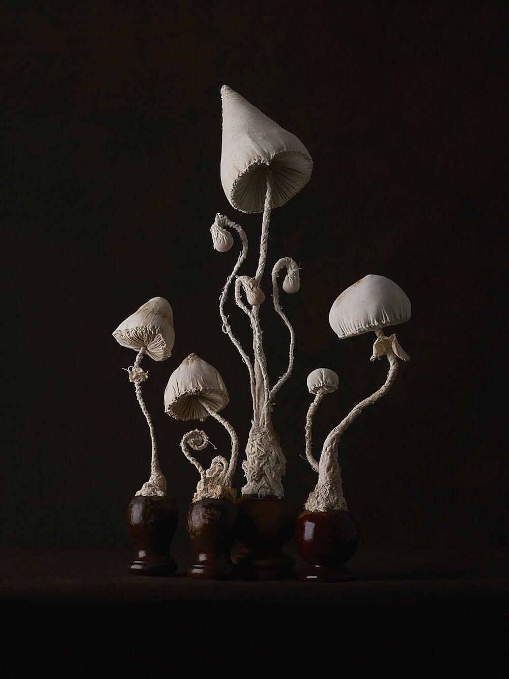 toadstool-sculptures-mister-finch-freeyork-9