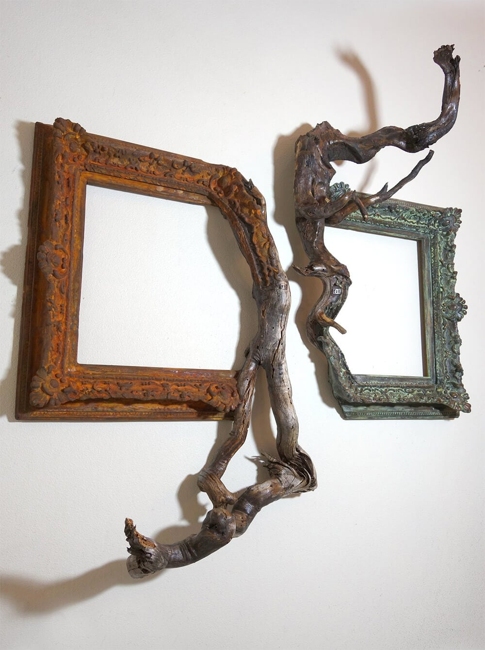 tree-branch-frames-darryl-cox-freeyork-6