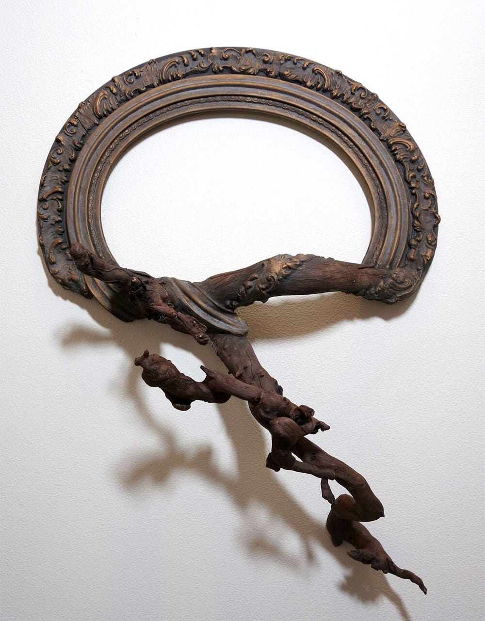tree-branch-frames-darryl-cox-freeyork-9