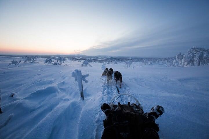 brice-portolano-arctic-love-fy-19