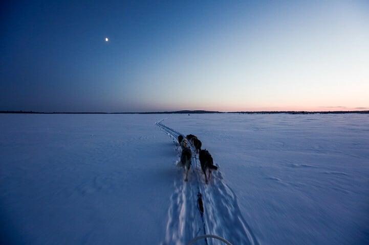 brice-portolano-arctic-love-fy-3