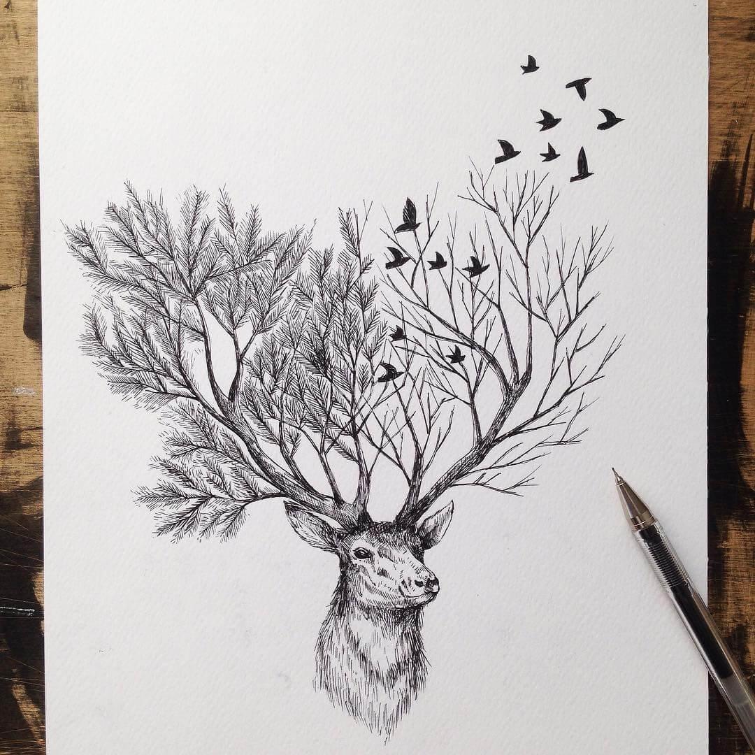 animals-alfred-basha-6