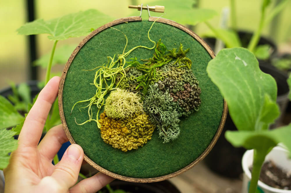 intricate-moss-assemblages-3