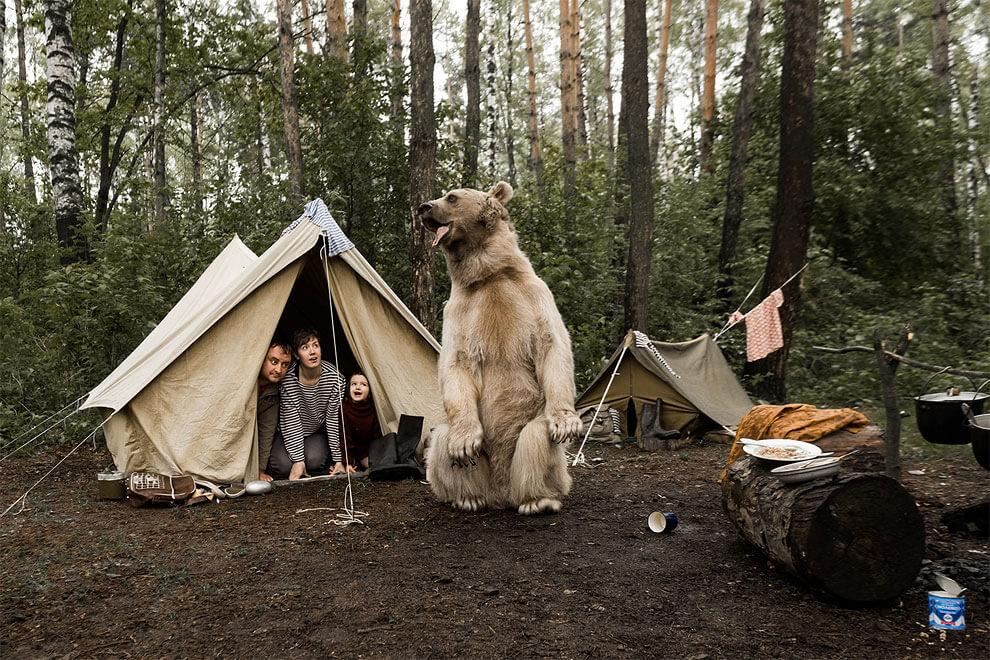 olga-barantseva-bear-family-3