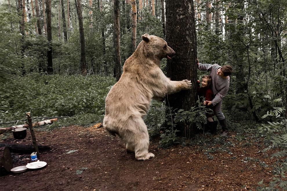olga-barantseva-bear-family-8